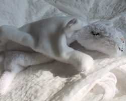 Schnuffeltuch nähen: Kuscheliges Schaf für Babys und Kleinkinder